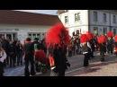 Karneval Fasching (Карнавал - Фашинг ) Германии 2018 город Müllheim ( Baden )