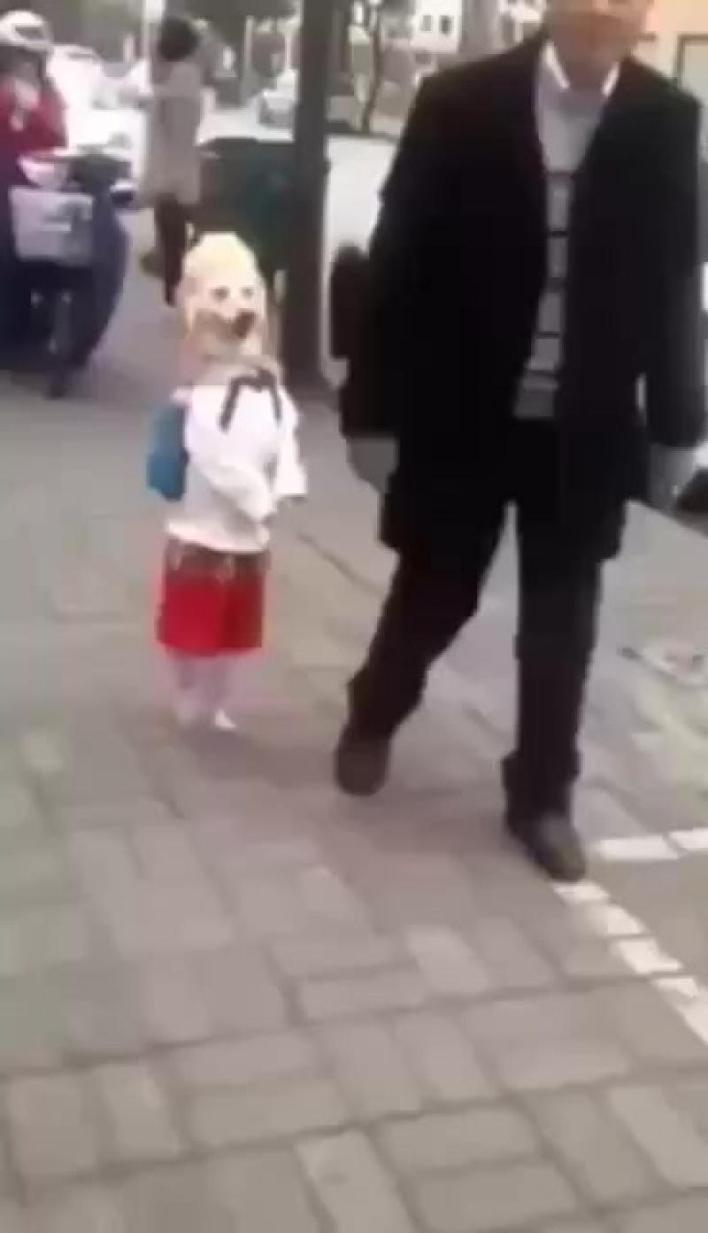 Модная собачка
