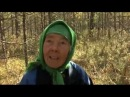 Розповідь про русалок і бортника, с. Ольмани, Білорусь