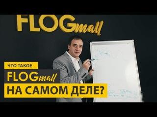 Что такое FLOGmall на самом деле?