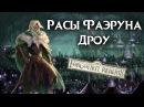 Дроу Темные эльфы Расы Фаэруна Забытые Королевства Лор