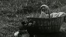 Венок сонетов (1976) - Военный, драма, экранизация
