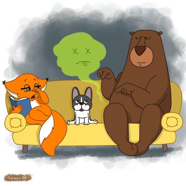 Картинки с крошкой ши и медведем