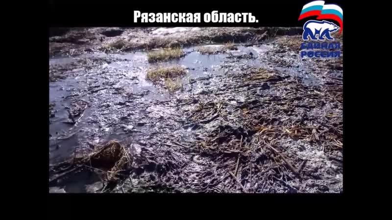 Фекалии. Рязанская область.Спасский район п.Павловка. 2019г