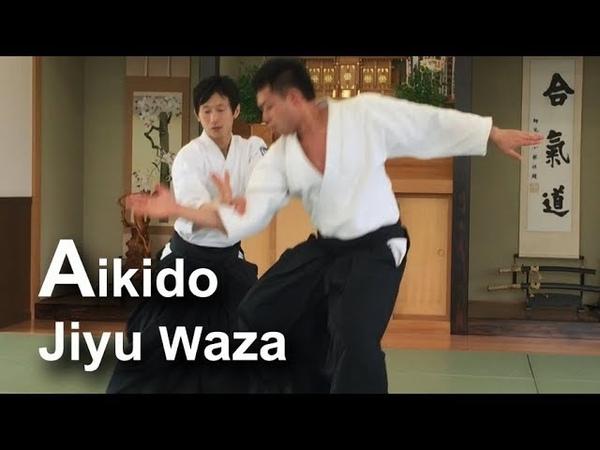 Beautiful and Dynamic Aikido Freestyle Jiyu Waza 02