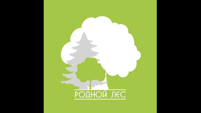 ОТЧЕТ ПО ПОСАДКАМ май 2019 БОЛДАСЕВО Ичалковский район Мордовия
