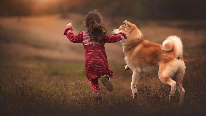 Картинка друзья Девочка друзья собака бег радость Wêneyên zarokan Girl dostan kûçikê bêdeng