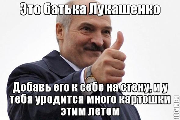 ПОСТ КОНСТРУКТОР, изображение №6