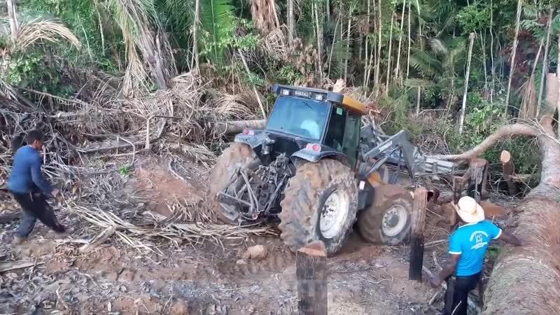 Такого никто не ожидал! Вот на что способны трактора на бездорожье