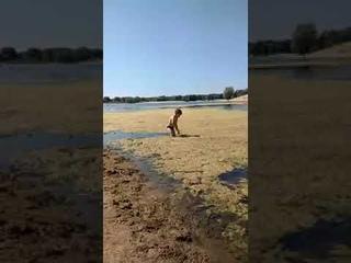 Мальчик пытается почистить любимое озеро от мусора!