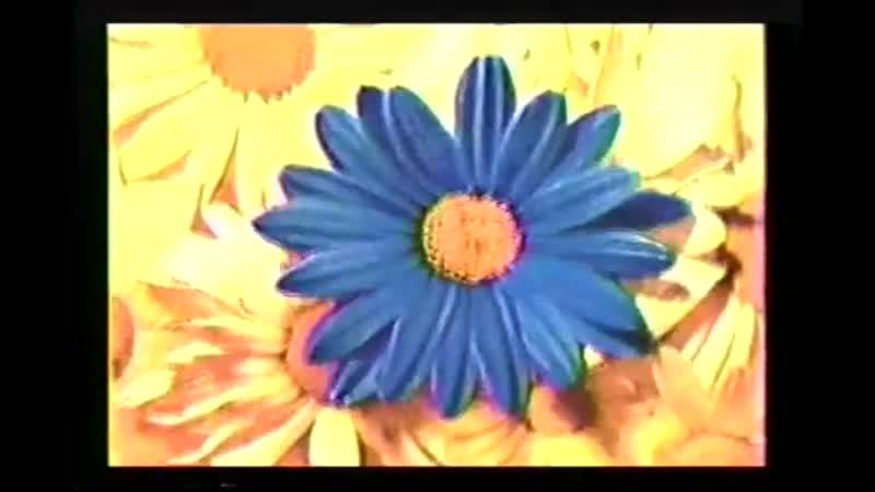 Baz Luhrmann - Everybodys Free (to wear SUNSCREEN)