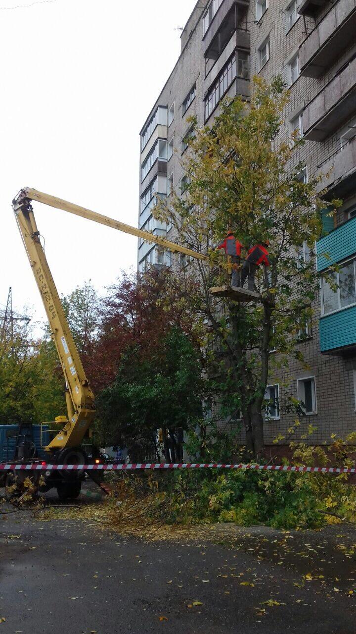 Спиливание аварийных деревьев улица Ердякова