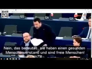Salvini im EU Parlament: Ihr seid nicht mehr normal!