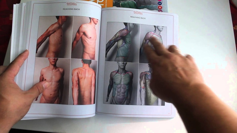 Uldis Zarins opening the book Anatomy For Sculptors for very first time