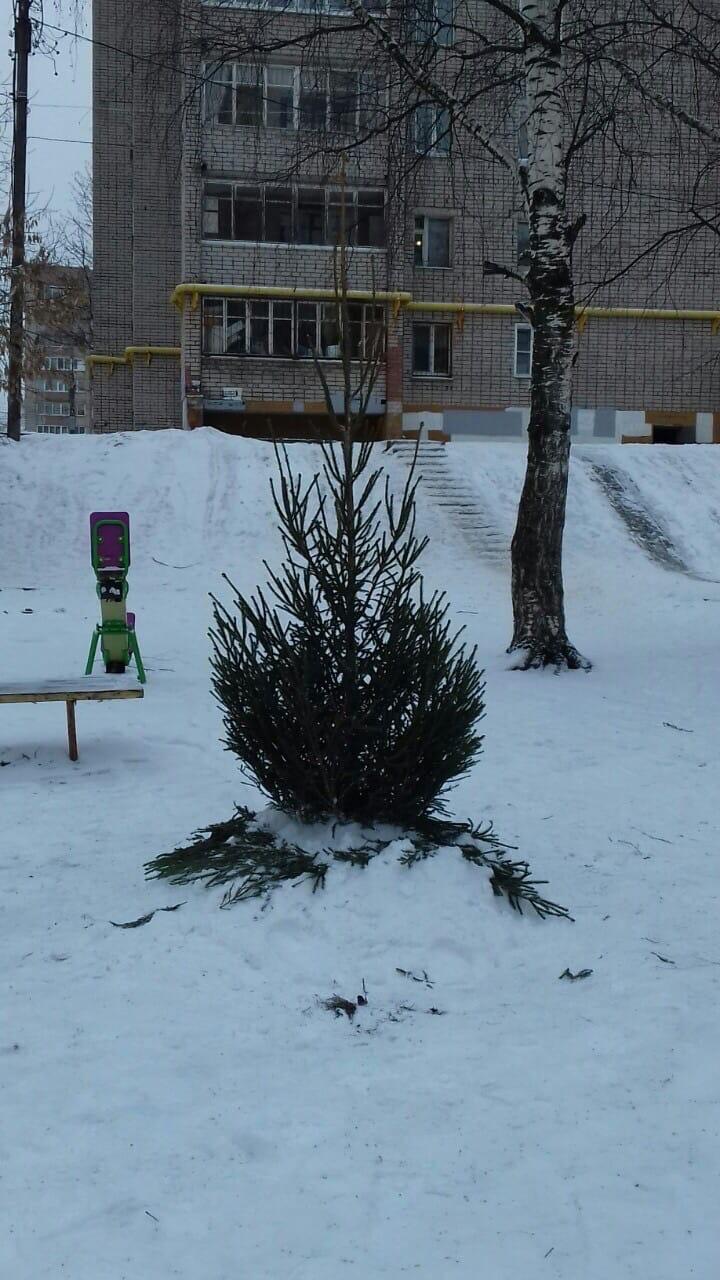 Началась установка новогодних ёлочек ️ улица Московская