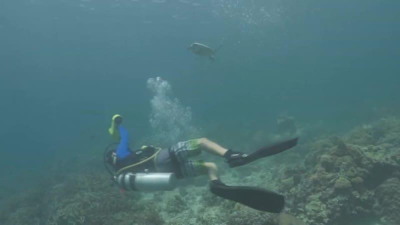 Бесконечная радость в подводном мире