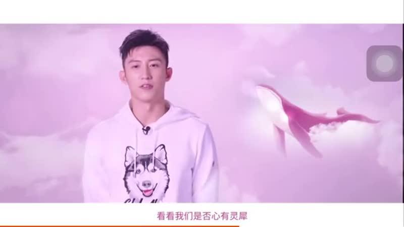 Huang Jingyu Johnny 黄景瑜 FILA Джонни в поисках Alice 14/10/2019