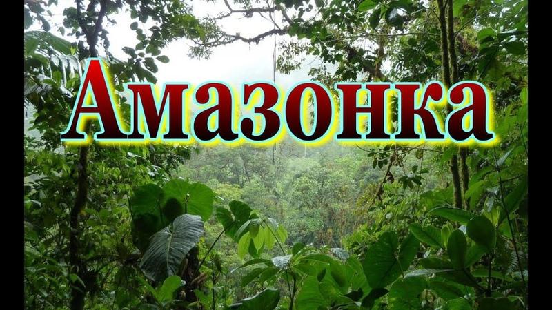 Мир природы Амазонка Колыбель жизни Документальный фильм о природе