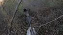 Охота на 300 кг кабана. Первый большой кабан нового сезона. Hunt for 300 kg of wild boar.