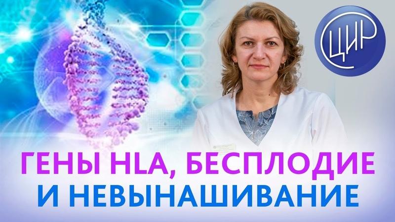 Что такое система HLA Роль генов HLA в бесплодии и невынашивании Дементьева С Н смотреть онлайн без регистрации