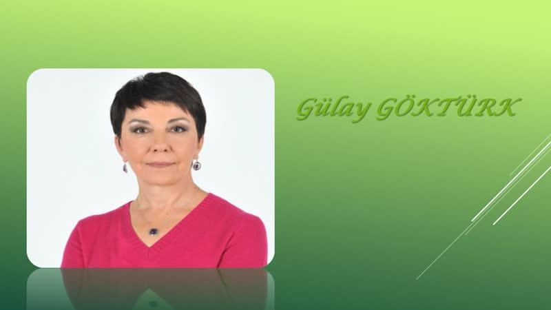 07. Gülay Göktürk Nasıl bir başkanlık sistemi.mp4