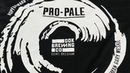 Pro Pain @ Dok Brewing Company for the release of Pro Pale pale ale