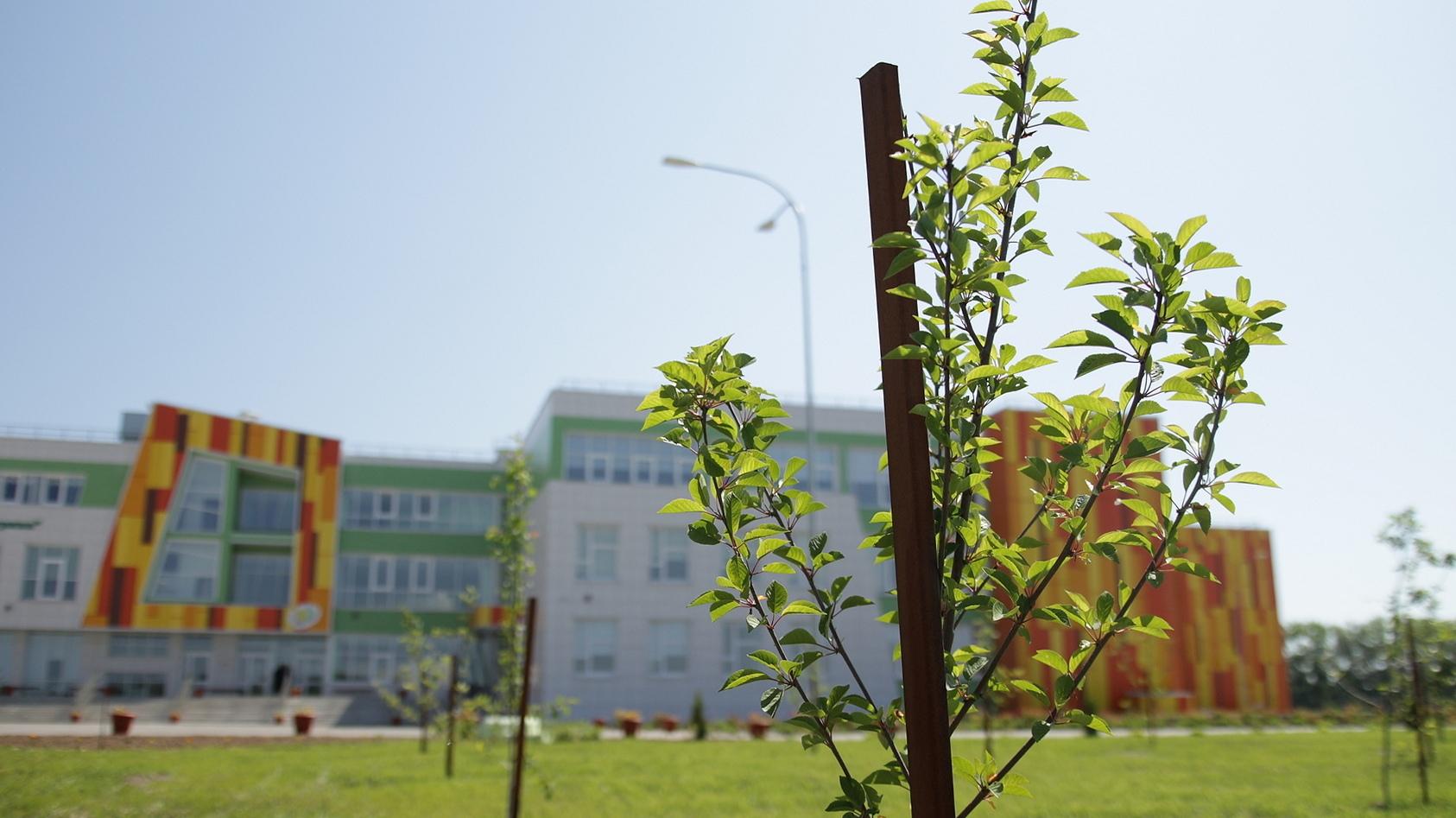 5-я школа ждёт новых учеников