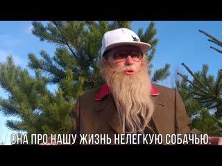 Little big rock paper scissors пародия дед архимед