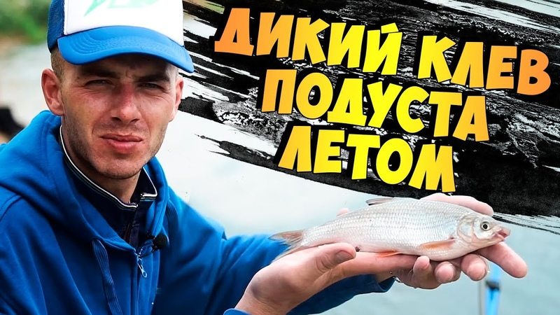 Рыбалка на фидер! Бомбим ПОДУСТА и остальную белую рыбу летом в жару на Днепре