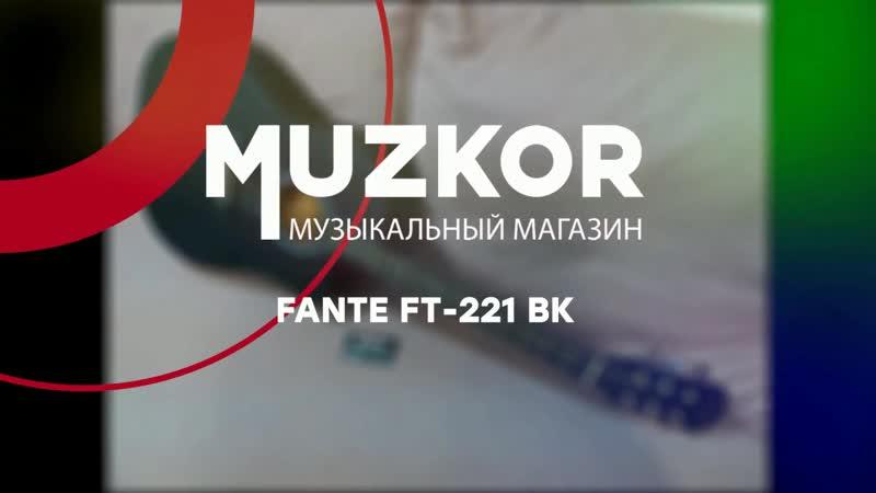 Fante FT-221 BK