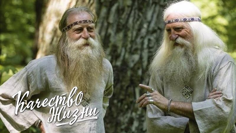 Качество жизни Александр Архипов Как поддерживали здоровье наши предки