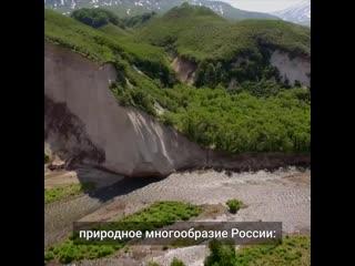 В России на самом высоком уровне хотят закрепить ответственное отношение к природе