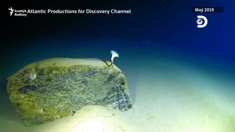 Okeanyň düýbünde uly çuňlukda zir zibil tapyldy