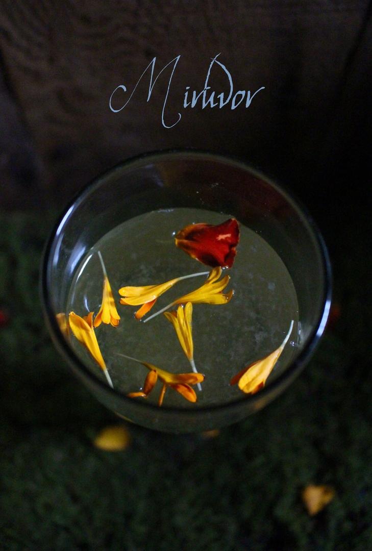 Эльфийское медовое вино, изображение №3