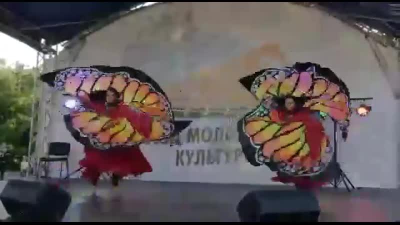 Бабочки Мурманск