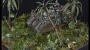 Vietnam War Jungle Ambush Diorama 1 72