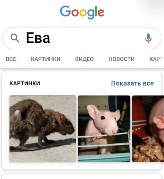 Анекдот Про Еву