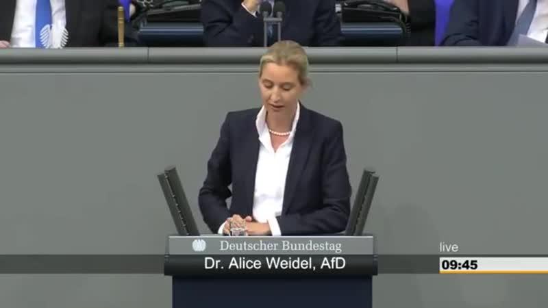 Dr. Alice Weidel (AfD). Herr Hofreiter regen sie sich nicht so auf, sie fallen ja fast vom Stuhl