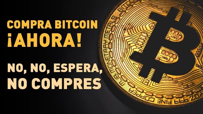 ¿Es el bitcoin una estafa Para saberlo debes conocer la primera burbuja especulativa de la historia