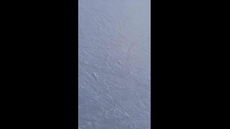 Video-d7e00330422f914525f03e0a55c40dc5-V.mp4