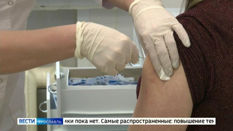 В Ярославской области прививку от коронавируса сделали почти 33 тысячи человек