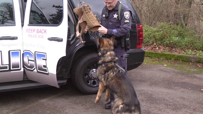 Salem Police K-9 Unit received donation of two K-9 cameras