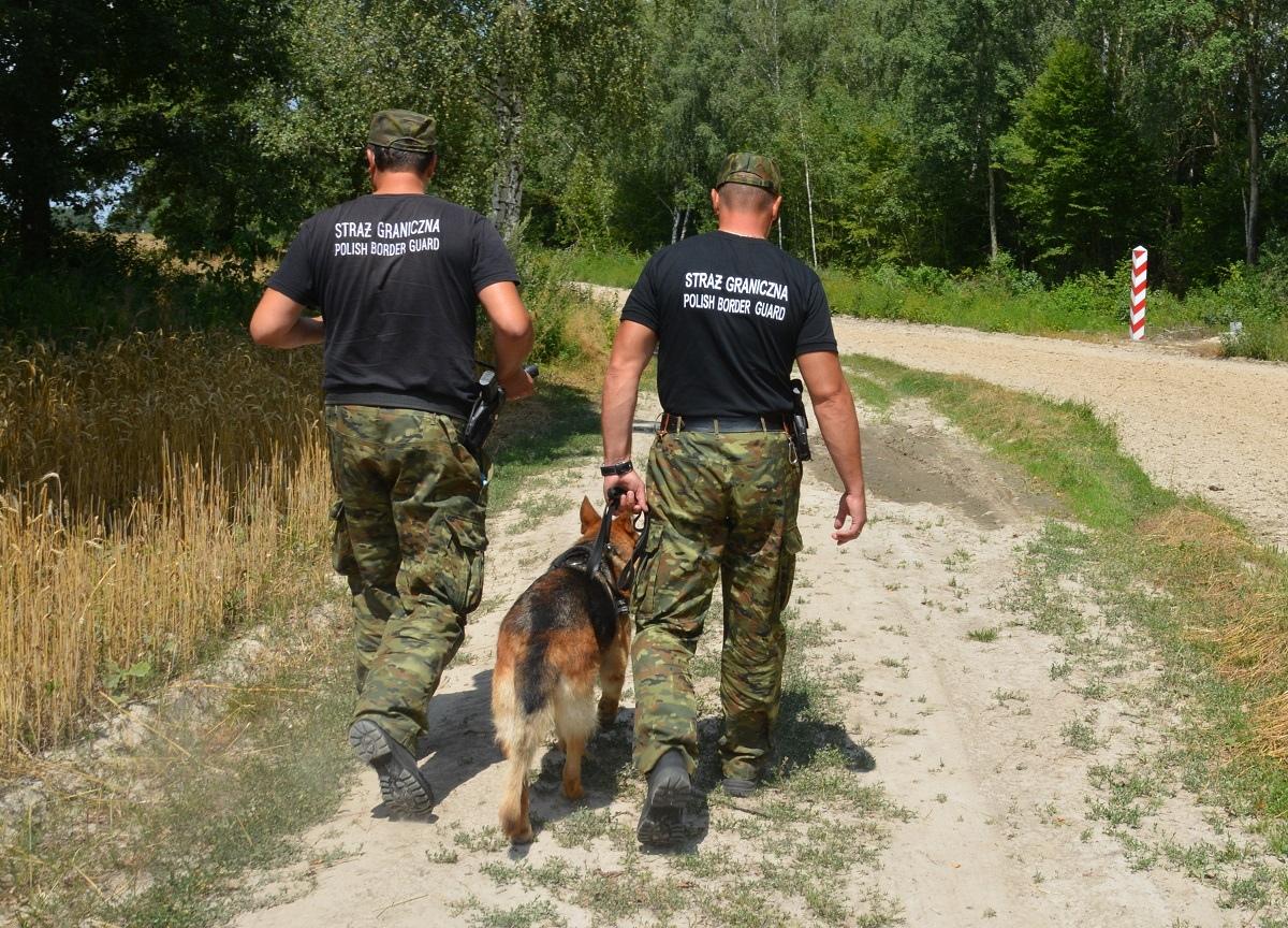 Нелегальный мигрант из России был задержан на польском участке границы у Тересполя