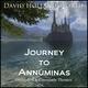 David Hollandsworth - Eagle's Flight