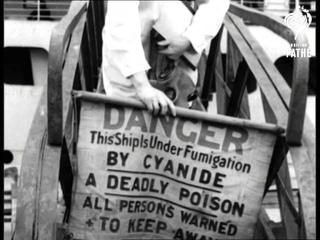 . Health Ship (1948)