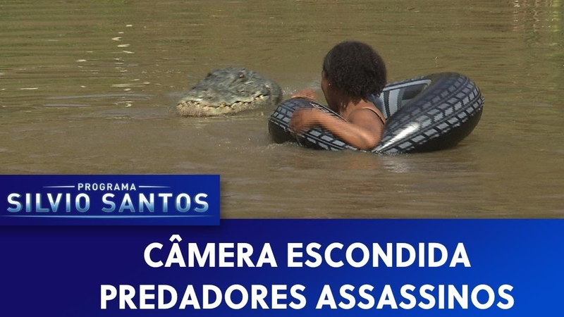 Predadores Assassinos Crawl Prank Câmeras Escondidas 22 09 19