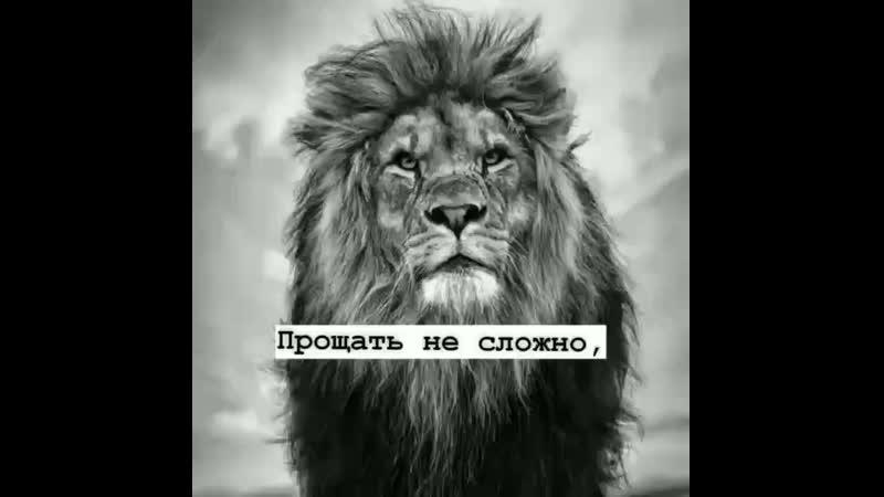 Oziev__700_20200812_120537_0.mp4