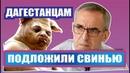 Последние новости Дагестана сегодня студенты против Махачкала Дербент Дагистан