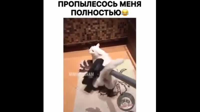 Viaskobrat ЭТО ФИАСКО БРАТАН