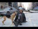 Я – легенда 2007— русский трейлер